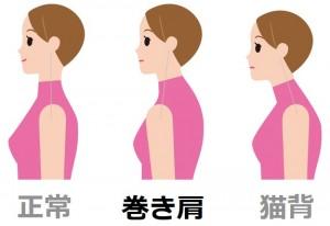 巻き肩 猫背 正常な肩・背骨 耳と肩の位置に注目