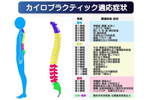 カイロプラクティック適応図