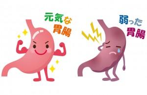 内臓疲労 胃腸 慢性的な腰痛 整体 西宮